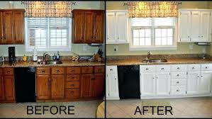 Should I Paint My Kitchen Cabinets White New Decorating Ideas