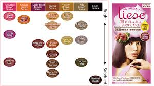 Liese Color Chart Review Liese Raspberry Brown Monkayye