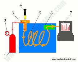 How Does Chromatography Work Explain That Stuff