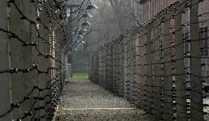 about concentration camps essay about concentration camps
