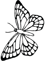 Butterfly Coloring Page Coloring Pages Coloring Butterfly Coloring