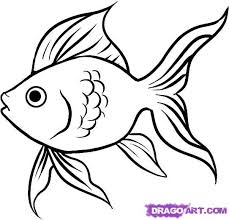 Simple Fish Outline How To Draw A Goldfish Step By Step Hundreds Of Great Drawing Tuts