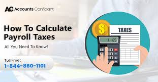 Employee Payroll Deductions Calculator Payroll Tax Calculator What It Is How To Use It Faqs