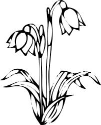 花のイラストフリー素材白黒モノクロno133白黒切り絵風