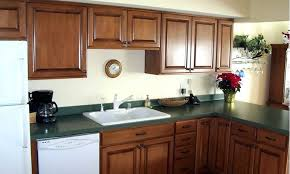 Kitchen Cabinet Resurfacing Kit Delectable Bathroom Cabinet Refacing Feralchildren