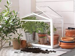 4_IKEA's mini-greenhouse