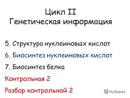 Презентация на тему Цикл ii Генетическая информация Структура  1 Цикл ii Генетическая информация