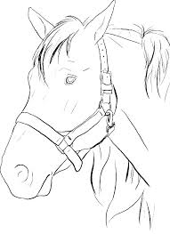 realistic horse coloring pages for realistic horse coloring pages spirit horse coloring pages coloring pages of