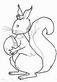 ▷ Coloring Pages Squirrels: Animated Images, Gifs, Pictures ...