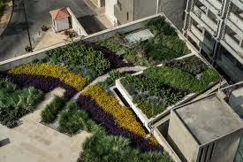 green studios rooftop garden beirut 5