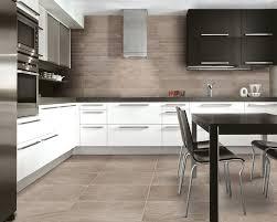 Kitchen Cabinets With S Build Kitchen Cabinet Doors Maxphotous Design Porter