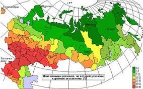 Экология Устойчивость природной среды экосистем в России  На приведенной карте видно что потенциальная устойчивость экосистем России практически всюду в той или иной степени снижена за счет замены коренных типов