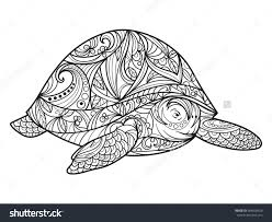 Small Picture Turtle Coloring Book Adults Vector Illustration Stock New Pages