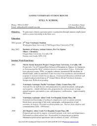 Pre Nursing Student Resume Examples Nursing Student Resume hashtagbeardme 2