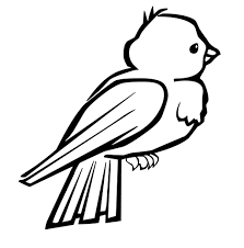 Small Picture Bird Coloring Pages Cornell Archives Printable Coloring Page For