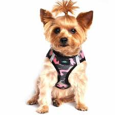 American River Dog Harness Camouflage Pink Camo