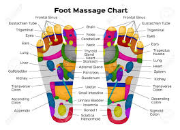 Foot Reflexology Chart With Description Of The Internal Organs