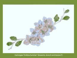 hammered botanical prints 17