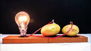 Potato Powered Light Bulb Project Free Energy Light Bulbs 220v Using Potato Read Description