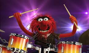 animal muppet drums. Perfect Animal Animal Skinsu2026 The Muppet Drummer Always Creates Mayhem Photograph The  Hub  On Drums R