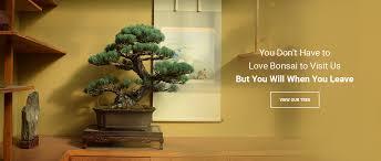 bonsai gardens. you don\u0027t have to love bonsai gardens