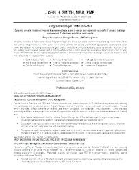 Resume Summary Examples Entry Level Mesmerizing Resume Summary Examples Entry Level Summary Section Of Resume
