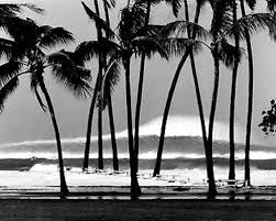 vintage surf photos. Interesting Surf Surfer Art With Vintage Surf Photos A