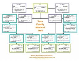 Family Health History Chart Create Your Medical Family Genealogy Genealogy Chart