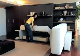 murphy bed sofa. Wonderful Sofa Murphy Bed Combo The Atoll Wall Many  Different Options