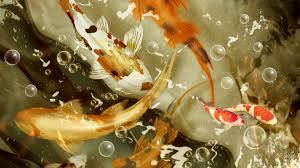 Koi Fish Pictures #6982087