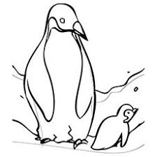 Baby in, baby in coloring page, in, ins, color ins, aquatic bird, flightless bird,cartoon in, baby ins, a cute in, g, in pages, baby pengwinpengupegion, peguins, peguin, pegiun. Penguin Coloring Pages Free Printable For Kids Penguin Coloring Animal Coloring Pages Penguin Coloring Pages