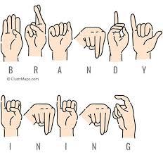 Brandy Vining - Public Records