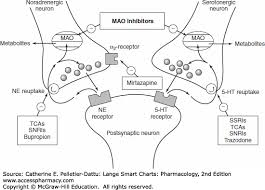 Psychiatric Medications Chart Psychiatric Medications Lange Smart Charts Pharmacology