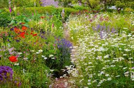 english garden designs. Unique Garden For English Garden Designs L