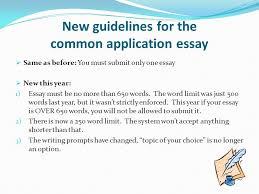 essay words co essay words