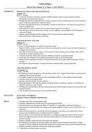 Insurance Resume Example Life Insurance Resume Samples Velvet Jobs 10