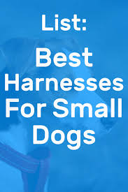 Voyager Harness Size Chart The 5 Best Harnesses For Small Dogs Doggowner