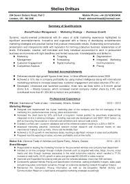 Summary For Resume Examples Extraordinary Marketing Manager Resume Example Marketing Manager Resume Summary