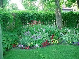 shade garden shade landscaping