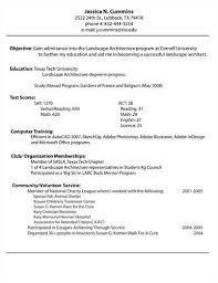 College Resume Template Create Professional Resumes Online For Free