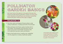 Small Picture Pollinator Garden Exhibit Lerin Mizar Design