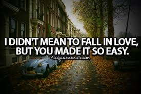 Quotes About Falling In Love Cool Falling In Love Quote