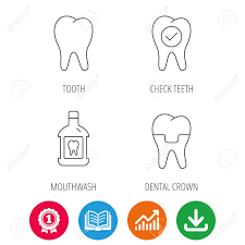 Teeth Growth Chart Tooth Dental Crown And Mouthwash Icons Check Teeth Linear Sign