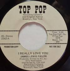 James Lewis Fields - I Really Love You / How Long Shall I Wait (1973,  Vinyl) | Discogs