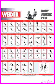 Weider Body Works Pro Chart Weider Ultimate Body Works Workout Guide Pdf