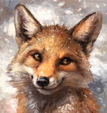 картинки лисы красивые