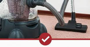 best vacuum for bed bugs. Wonderful Best And Best Vacuum For Bed Bugs