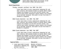 aaaaeroincus marvellous example of a written resume cv aaaaeroincus lovable more resume templates resume resume and templates delectable resume profile statement