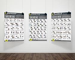 Dumbbell Workout Chart 3 Workout Poster Pack Dumbbell Exercises Bodyweight