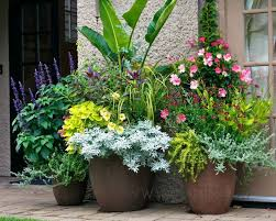 Small Picture 508 best Container gardening images on Pinterest Pots Flowers